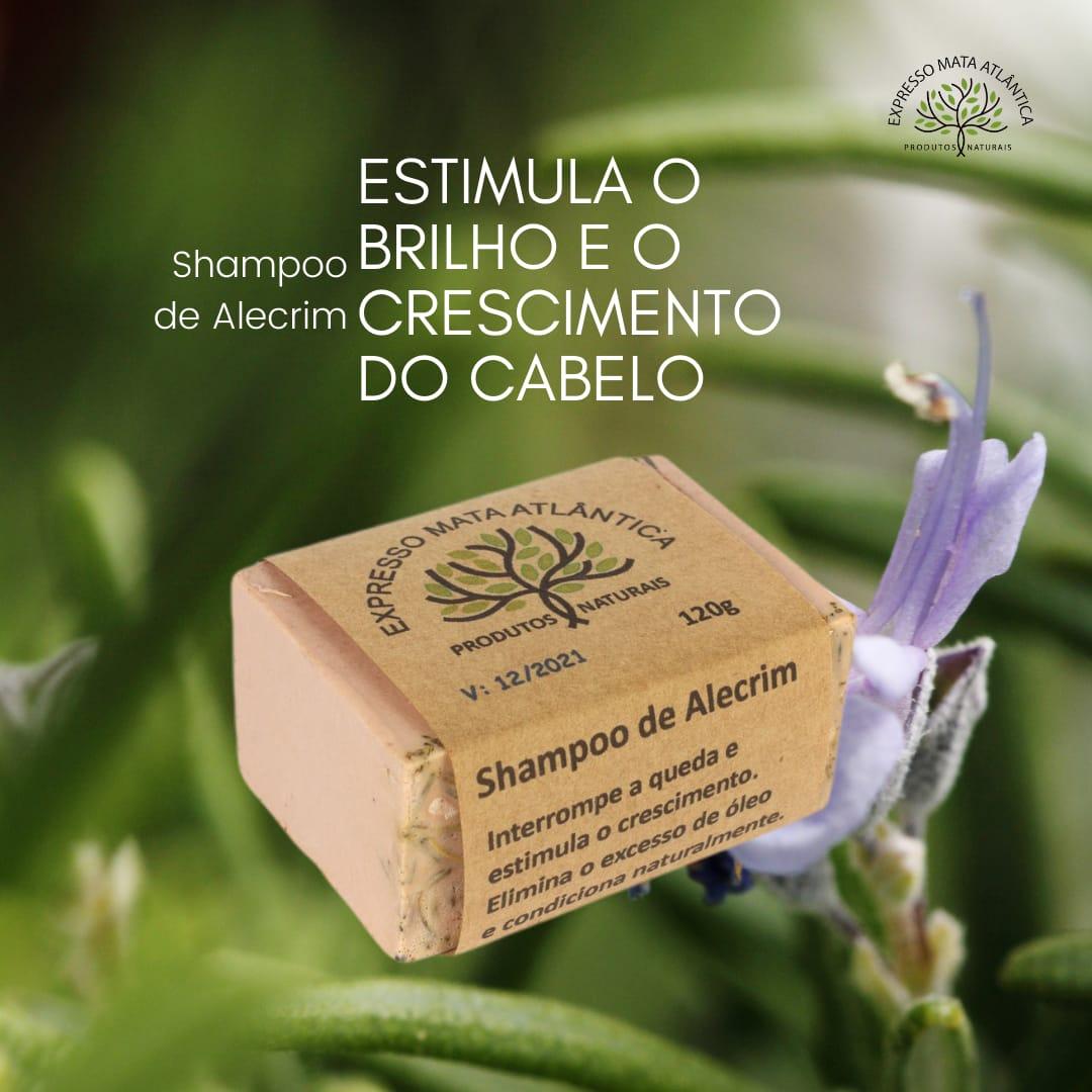 Shampoo Sólido Vegano Natural de Alecrim da Expresso Mata Atlântica