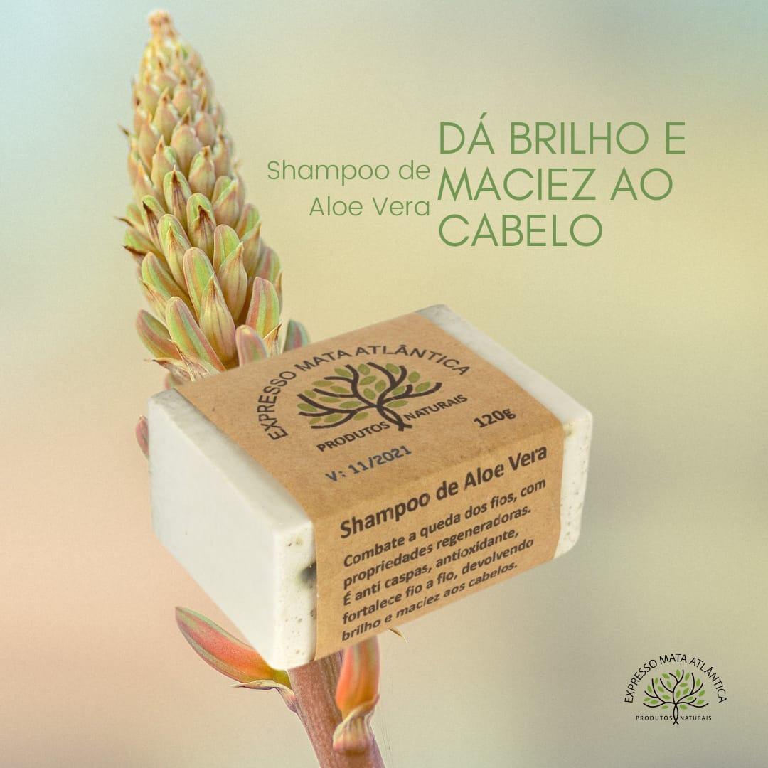 Shampoo Vegano  Aloe Vera da Expresso Mata Atlântica