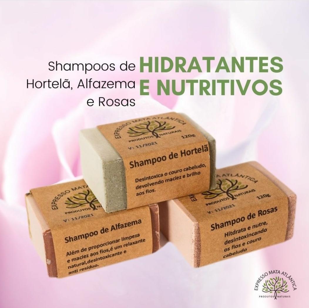 Shampoos barra Naturais, Veganos e Orgânicos da Expresso Mata Atlântica