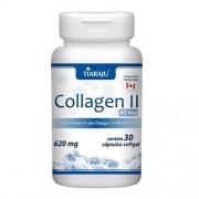 Collagen II 620Mg Com Omega 3 + Vitamina D com 30 Cápsulas Tiaraju
