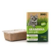 Graminha para gatos 130g Digestão e Eliminação de pelos