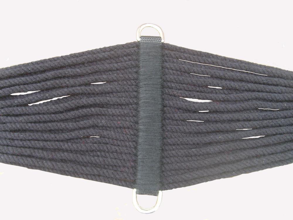 Barrigueira Quarto de Milha SV9264