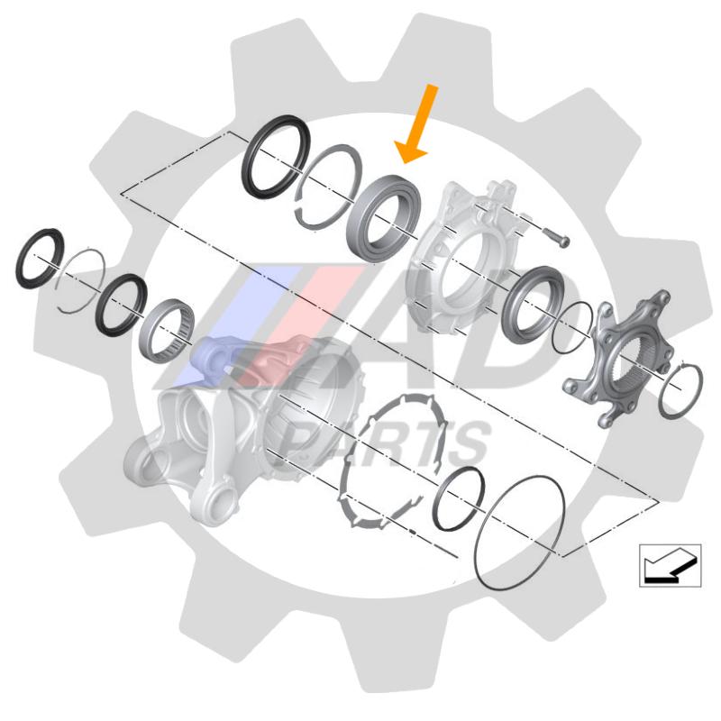 Rolamento Coroa Roda Traseira BMW R Nine T