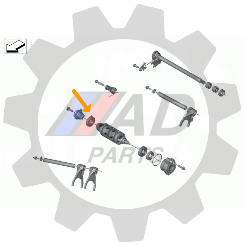 Rolamento Troca de Marchas BMW S1000RR 2009 até 2020