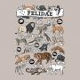 Camiseta Felidae