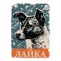 Camiseta Laika