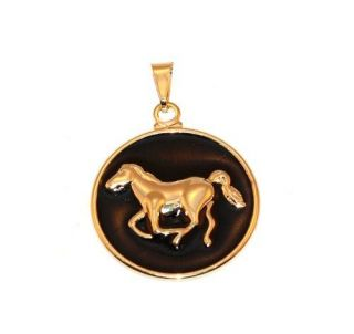 Pingente Medalha Resinado Preto Cavalo Country Folheado Ouro
