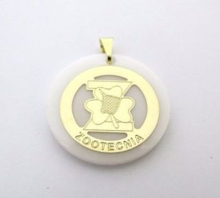Pingente Profissões Zootecnia Folheado A Ouro 18k
