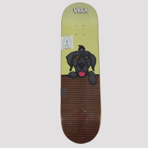 Shape Vela Dog Wall - Verde Claro