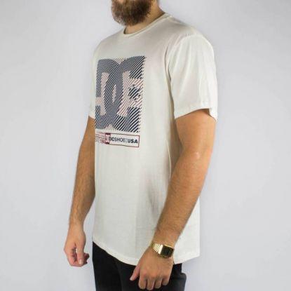 Camiseta DC Shoes Básica Destroy - Branca Gelo