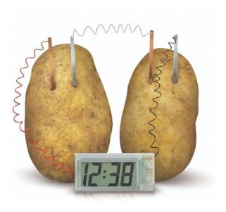 Relógio Batata Brinquedo Educativo Laboratório De Ciências 4m