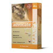 Antipulgas Bayer Advocate para Gatos até 4kg