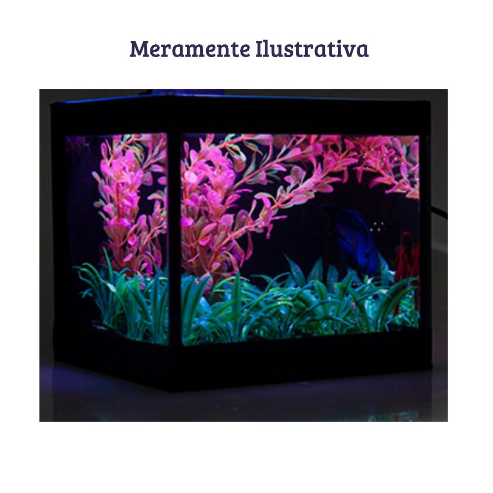 Aquário Betteira com Iluminação LED Bivolt e Decoração Aquabetta 17x15x15cm