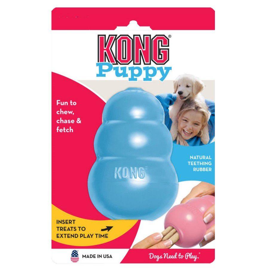 Brinquedo Interativo Kong Puppy Cães Filhotes Azul Pequeno