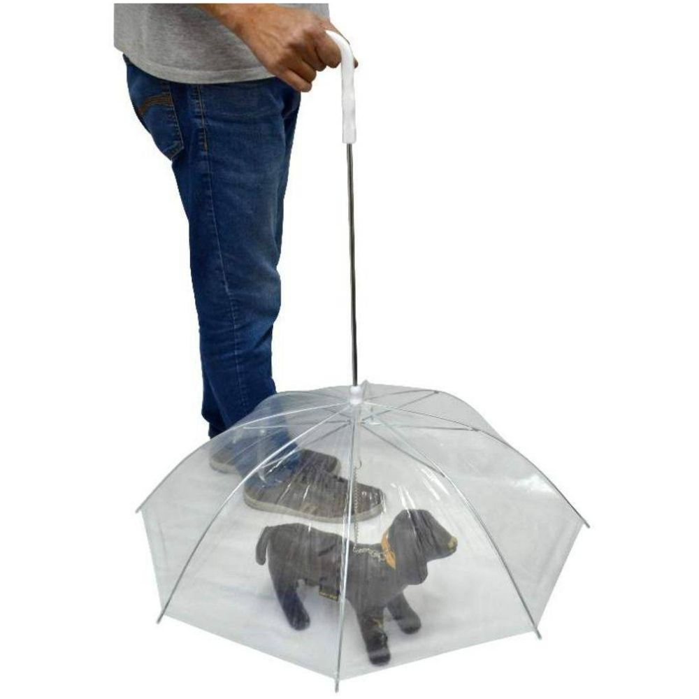 Guarda-chuva para Cães The Pets Brasil Transparente