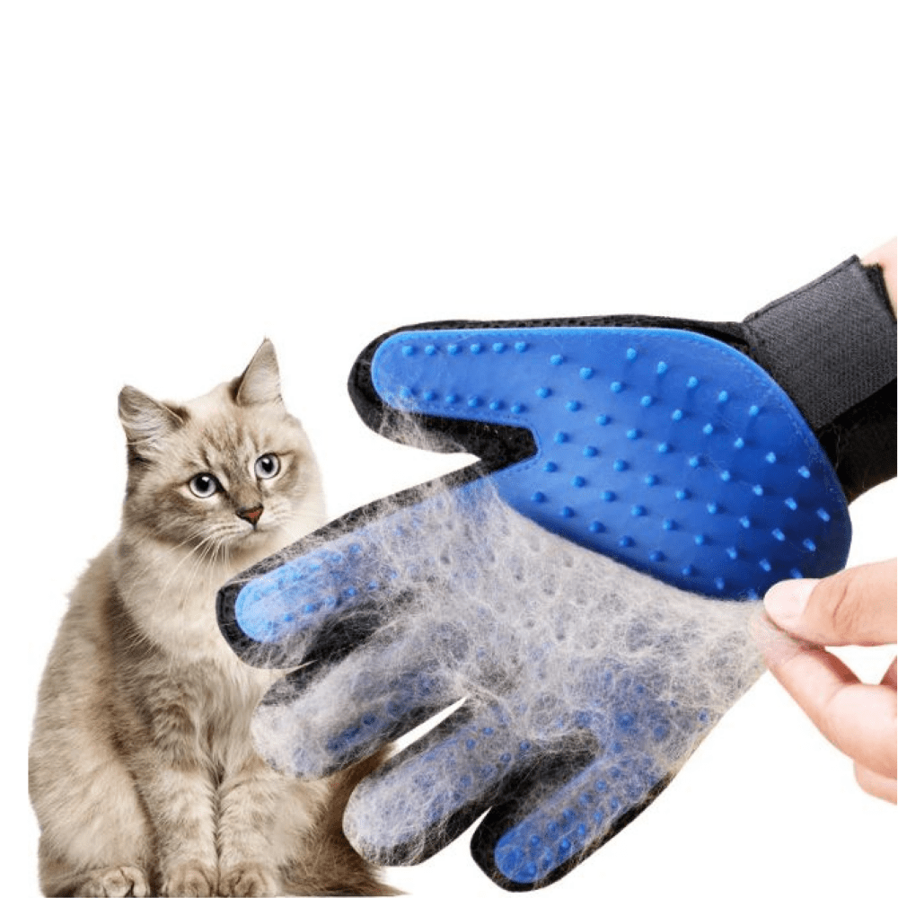Kit Banho a Seco CatMyPet + Luva Removedora de Pelos Gatos