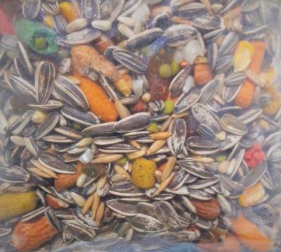 Mistura Balanceada para Papagaio Bonave 500 g