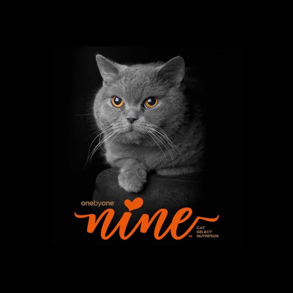 Petisco Sticks Slim para Gatos Spin Onebyone Nine Carne 20g