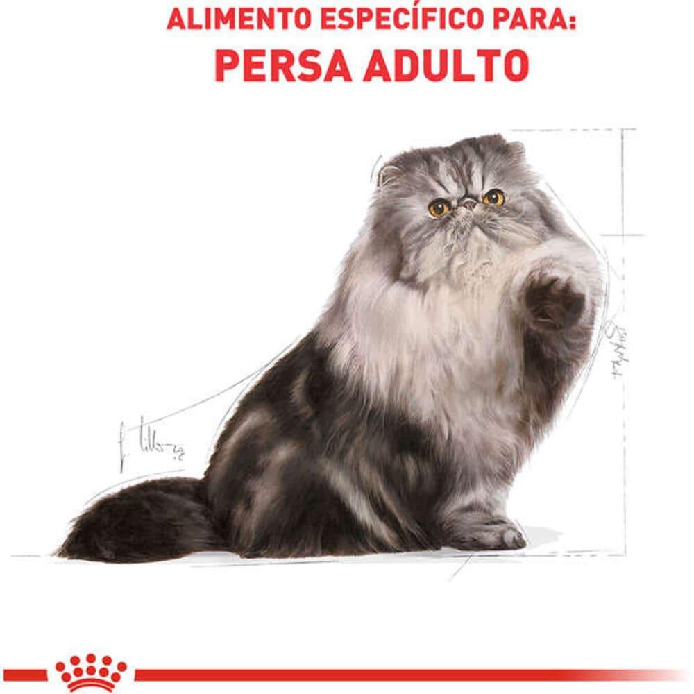 Ração para Gato Persa Royal Canin 1,5KG