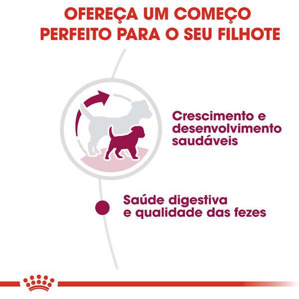 Ração Royal Canin Puppy Mini Indoor Junior para Cães Filhotes 1Kg