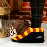 Pantufa 3D Harry Potter