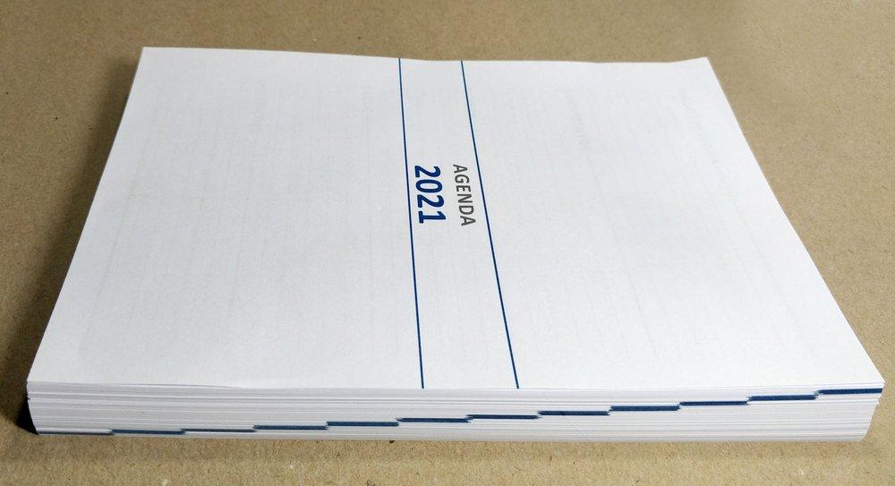 Agenda Personalizada 2021 Dragon Fly