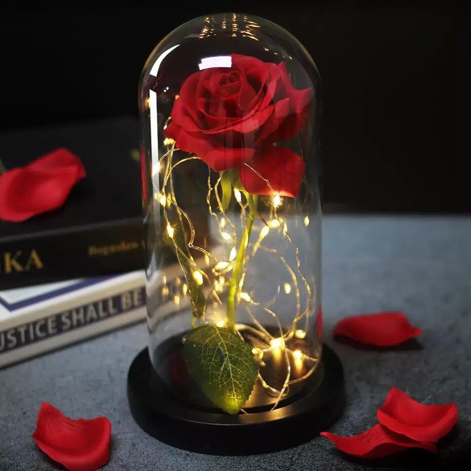 Luminária Cúpula Rosa Da Bela E A Fera Com Fio De Led Base Preta