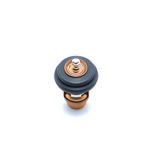 Válvula termostática para motor Mercury 15 HP Super