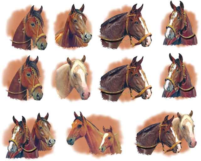 Decalque para Porcelana - Cabeças de Cavalo - 5cm