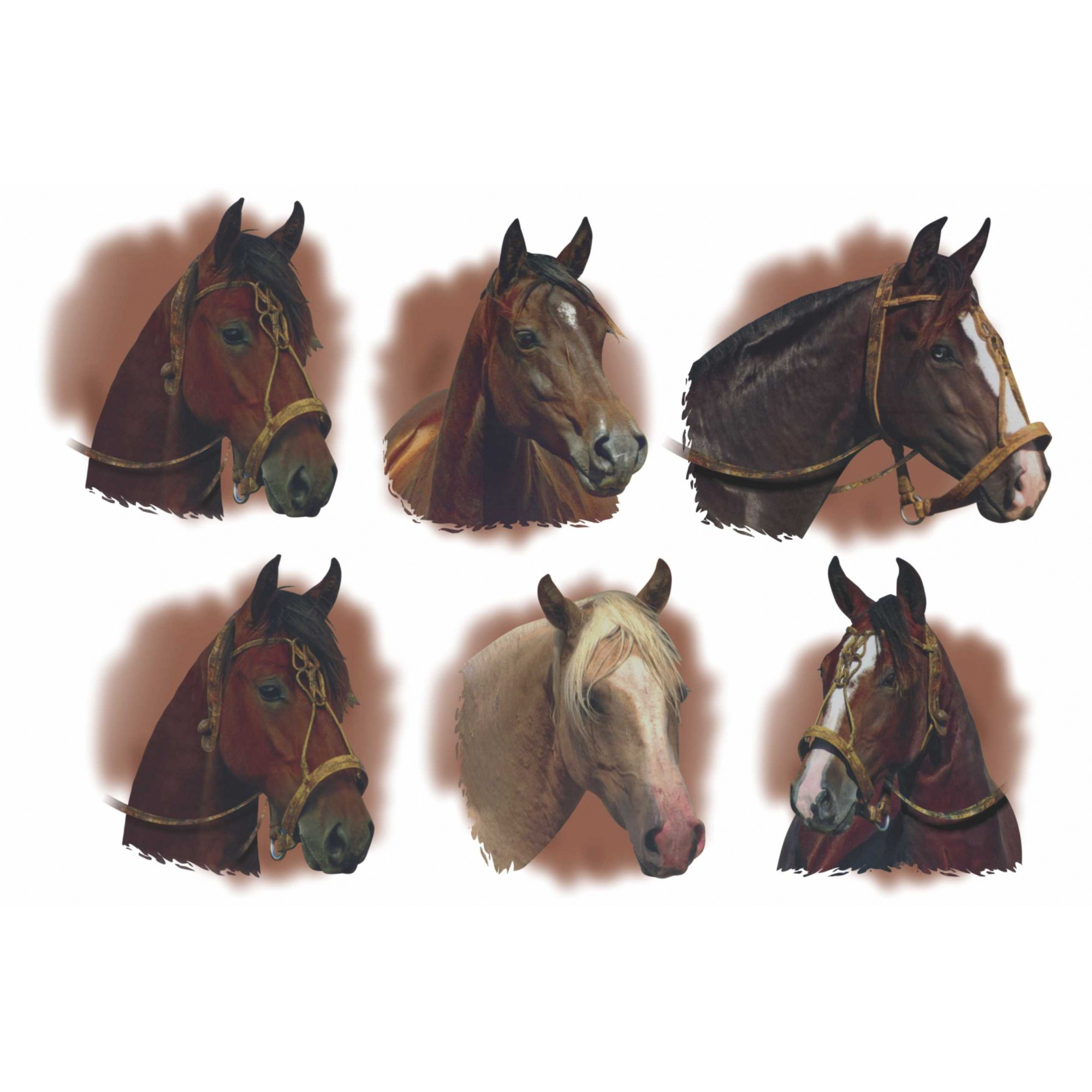Decalque para Porcelana - Cabeças de Cavalos 6,5cm - OUTRA TONALIDADE