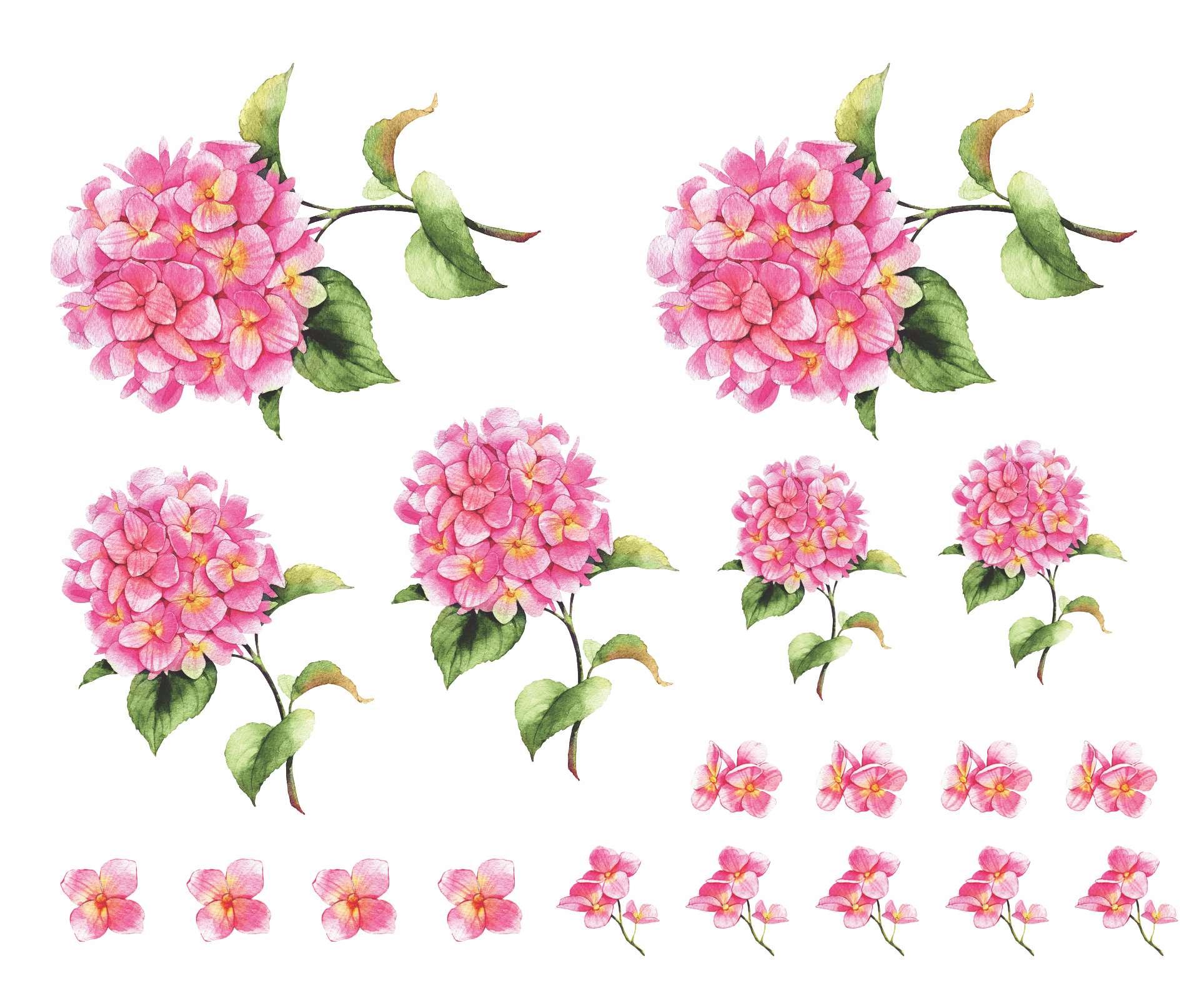Decalque para Porcelana - Hortênsia Rosa