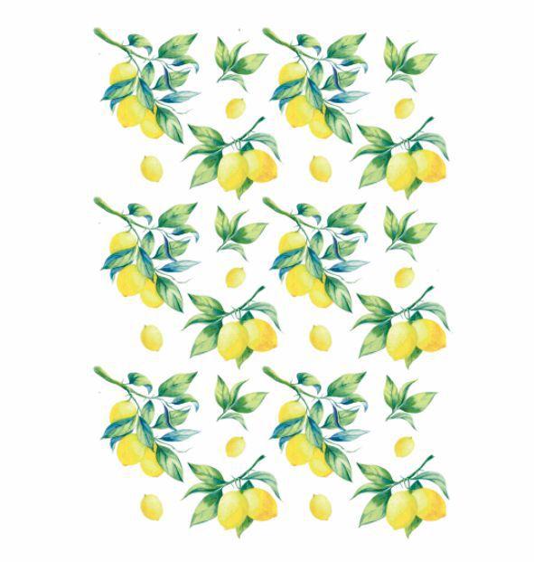 Decalque para Porcelana - Limões
