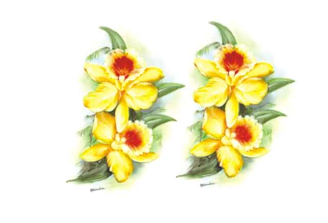 Decalque para Porcelana - Orquídea Amarela 14cm