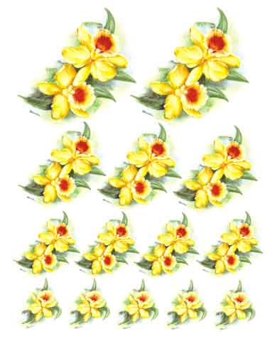 Decalque para Porcelana - Orquídea Amarela