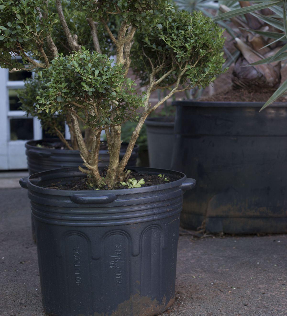 45 Vaso Embalagem para Mudas Plantas Flexível 33L com Alça