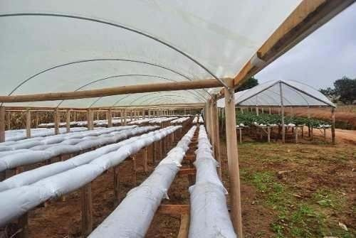 Slabs Para Plantio - Saco Para Plantio - 33cm X 10 Metros