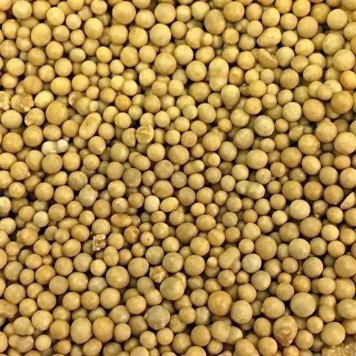 Fertilizante Forth Cote 14-14-14 100% Osmocote 3 Meses 400g