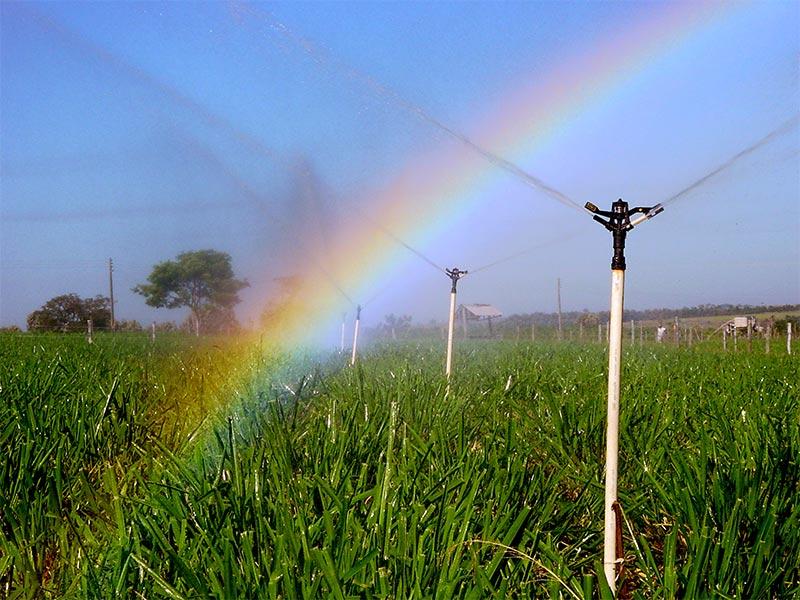 Aspersor Agrícola 4mm Preto Agrojet com Regulagem