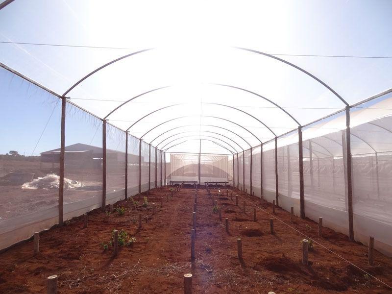 Filme Plastico Para Estufa Agrícola 6m X 100m - 100 micras