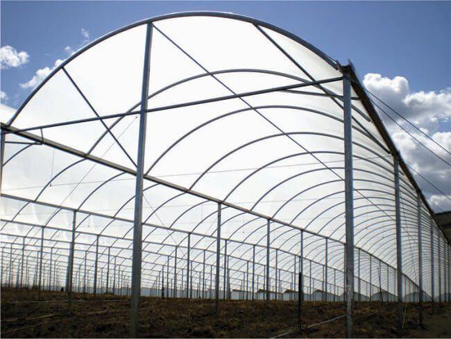 Filme Plastico Para Estufa Agrícola 6m X 100m - 150 micras