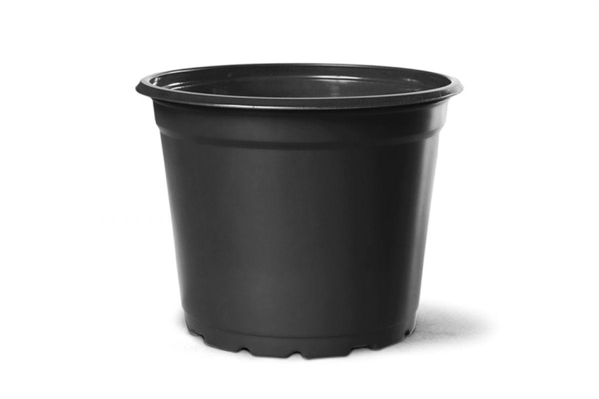 Pote Vaso para Mudas Holambra NP15 1,16L com 75 unidades