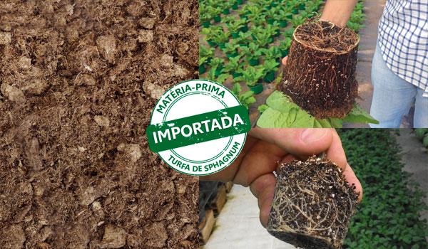 Substrato Sphagnotec 70% Turfa + 30% Perlita 50 Litros