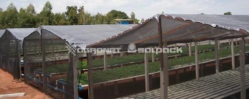 Tela Sombrite Termo Refletora Agrícola Prata 50% -
