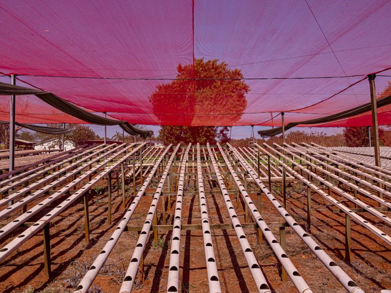 Tela Sombreamento Ultranet Vermelha 50% 2x13m