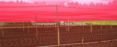 Tela Sombreamento Ultranet Vermelha 50% - 2x8