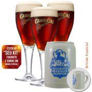 Jogo 3 Taças para Cerveja Rodenbach Cristal 435ml + Caneca Brinde