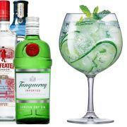 Taça de Gin Club Cristal 660ml