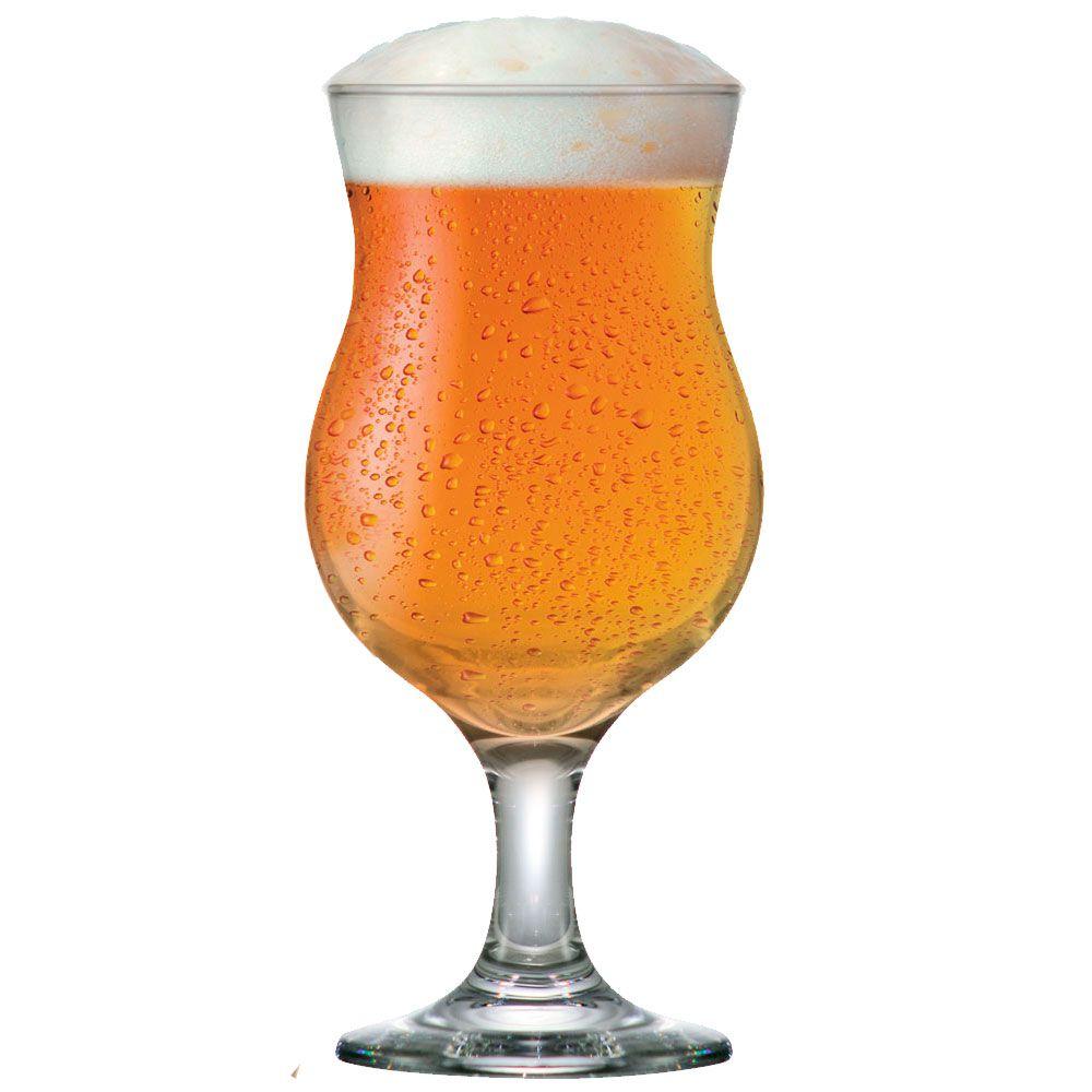 Jogo de Taça de Cerveja Vidro Tulipa Panamá 400ml 6 Pcs