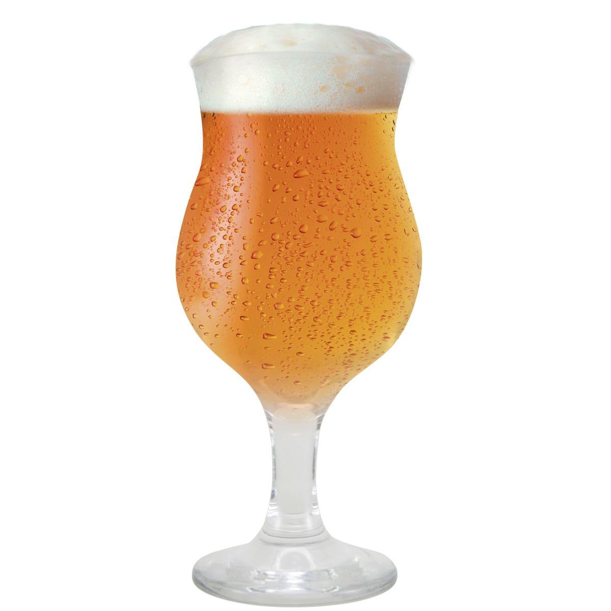 Taça de Cerveja Vidro Tulipa Panamá 400ml