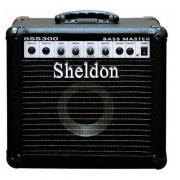 Cubo Amplificador Sheldon Para Contrabaixo BSS300